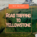Read along as we discover Bighorn Battlefield and Old Trail Town. This first day in Yellowstone we saw Lamar Valley and the Grand Canyon of Yellowstone.