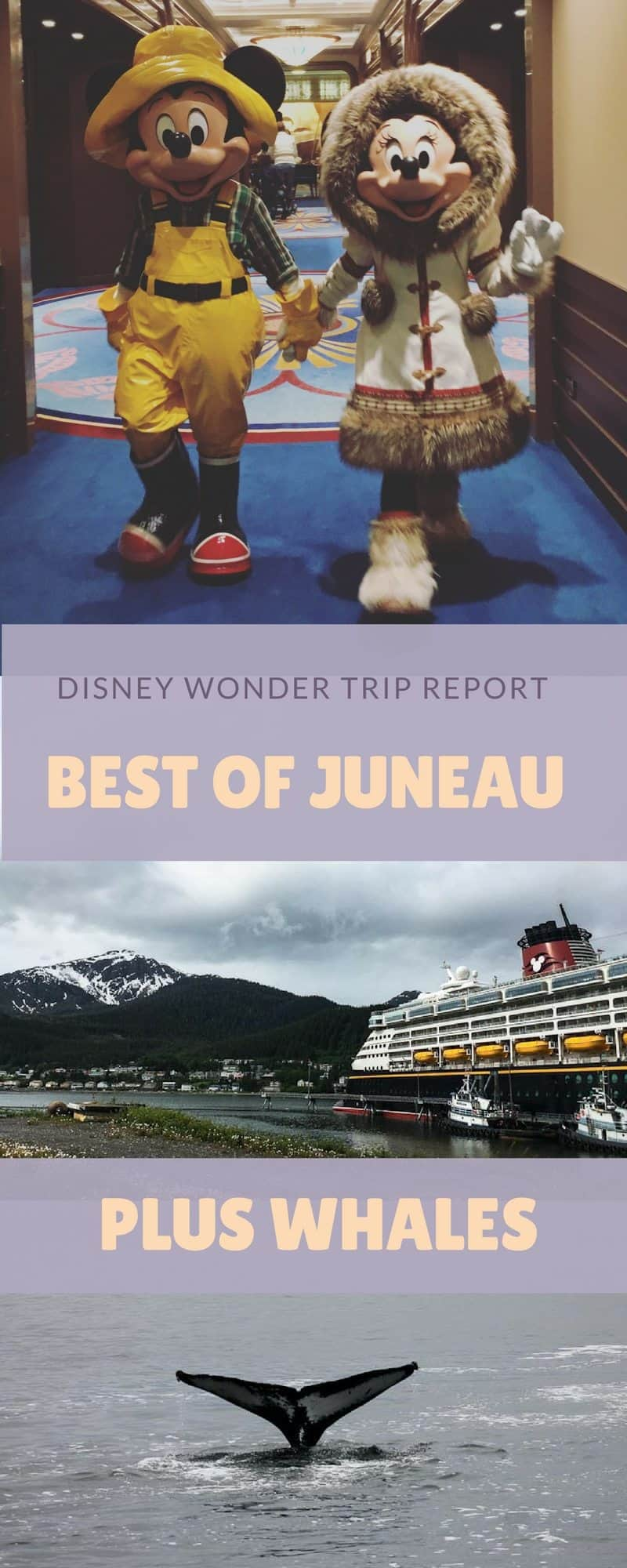 Disney Wonder Best Of Juneau Excursion Plus Whales Plaid Shirt Yoga Pants