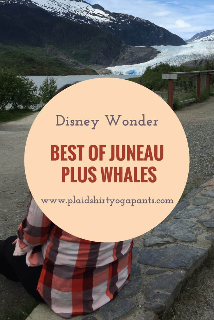 Disney Wonder:  Best of Juneau Excursion – Plus Whales