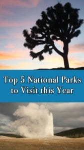 Click to read my top five National Parks to visit in the United States of America. This year, hit the road to some of America's greatest National Parks. Petrified Forest, Badlands, Joshua Tree, Yellowstone, Grand Canyon and Bonus Mount Rushmore.