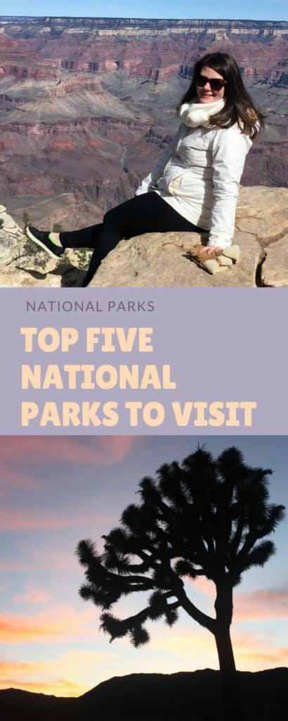 Many Americans take some time off this summer and will spend a long weekend outside eating barbecue, swimming, and enjoying family. Well, how about this year, you skip the backyard celebrations and hit the road to some of America's greatest National Parks. The top five national parks ranked based on annual visitors I suggest visiting this July are the Petrified Forest, Badlands, Joshua Tree, Yellowstone, and Grand Canyon.
